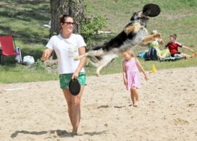 Pies akrobata