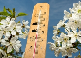 Rekord temperaturowy