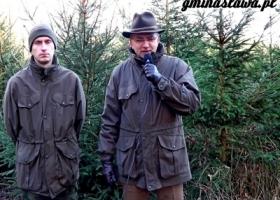 Leśnicy zapraszają po choinkę!