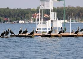 Jezioro Sławskie z łodzi